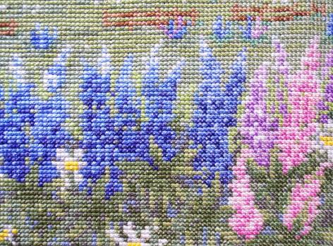 カナダ・プリンスエドワード島・ルピナスノ花咲くアンの家3.jpg