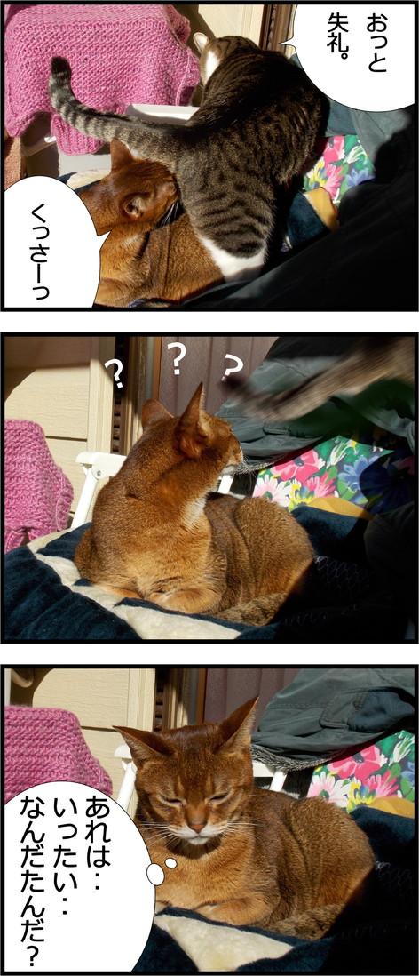 3コマ画像[1].jpg